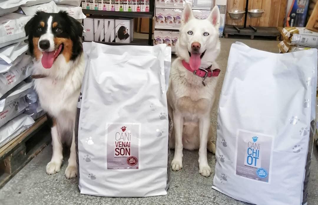 Conseils alimentation chiens